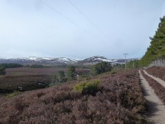 11-South-of-Inverlaidnan-Hill-070315.JPG