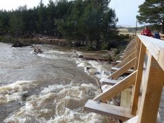 17-Dulnain-at-Inverlaidnan-Bridge-070315.JPG