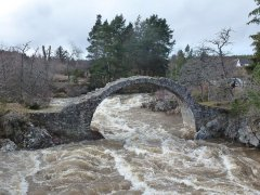 18-Packhorse-Bridge-Carrbridge-070315.JPG