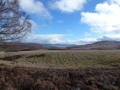 08-Towards-Grantown-from-Easter-Rynchkra-250217.JPG