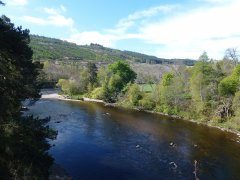 17-River-Spey-at-Carron-060517.JPG